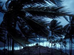 Wind, Wind Information, Facts, News, Photos -- National Geographic